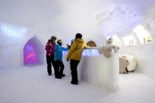 Ледяной бар Ахорн