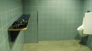 Туалет по-австрийски